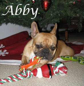 abby-review